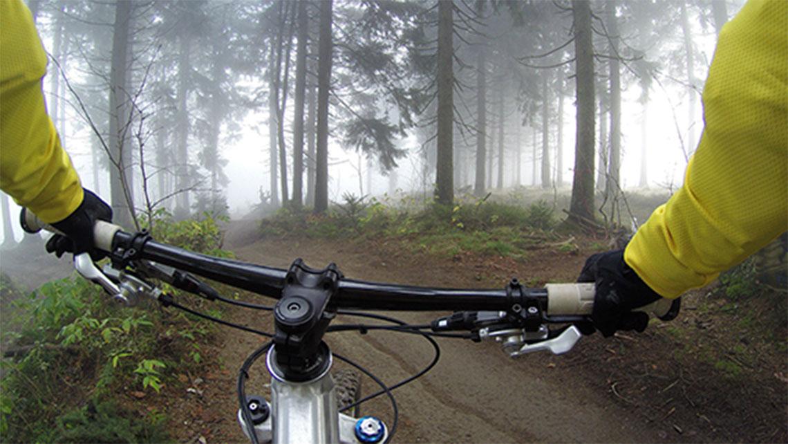 Cycling through Jungle
